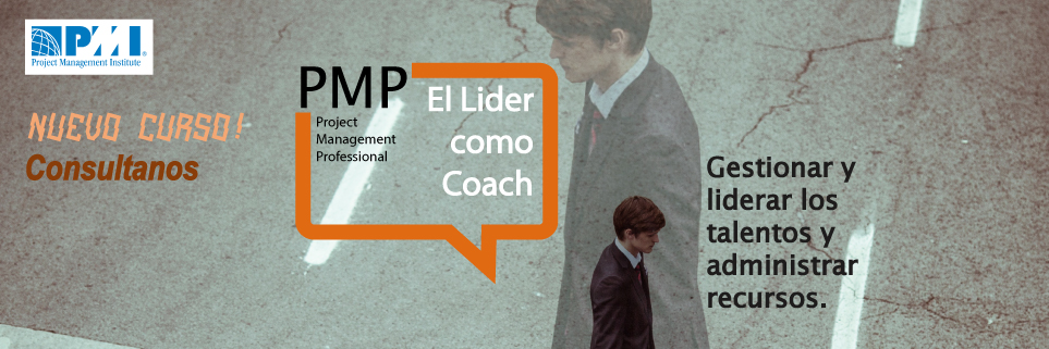 PMP banner consultanos